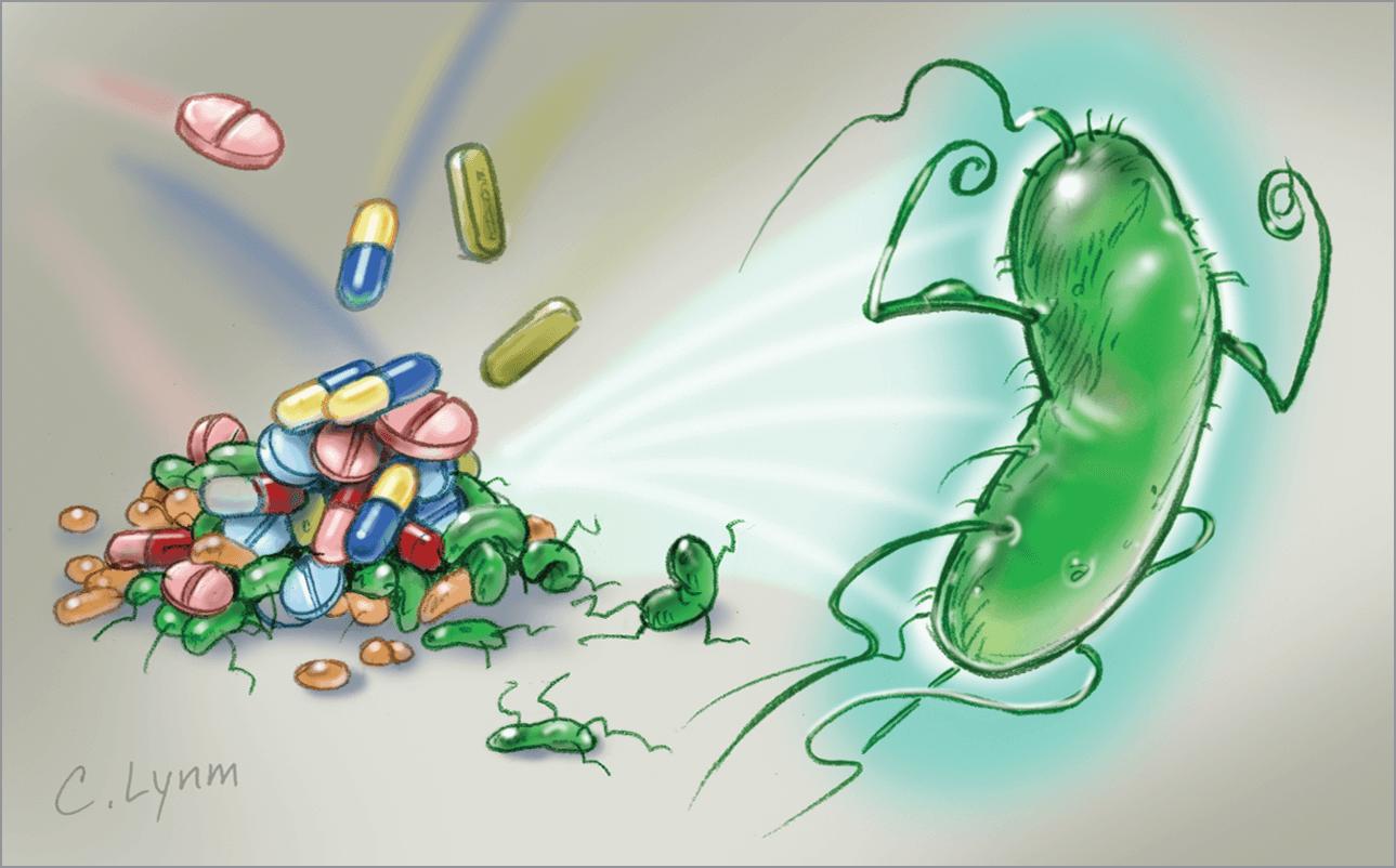 روکیدا   اختلال آنتی بیوتیک ها با سیستم ایمنی بدن؟   تغذیه سالم, درمان خانگی, پزشکی