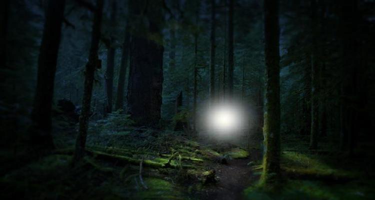 نور شبح مانند پولدینگ