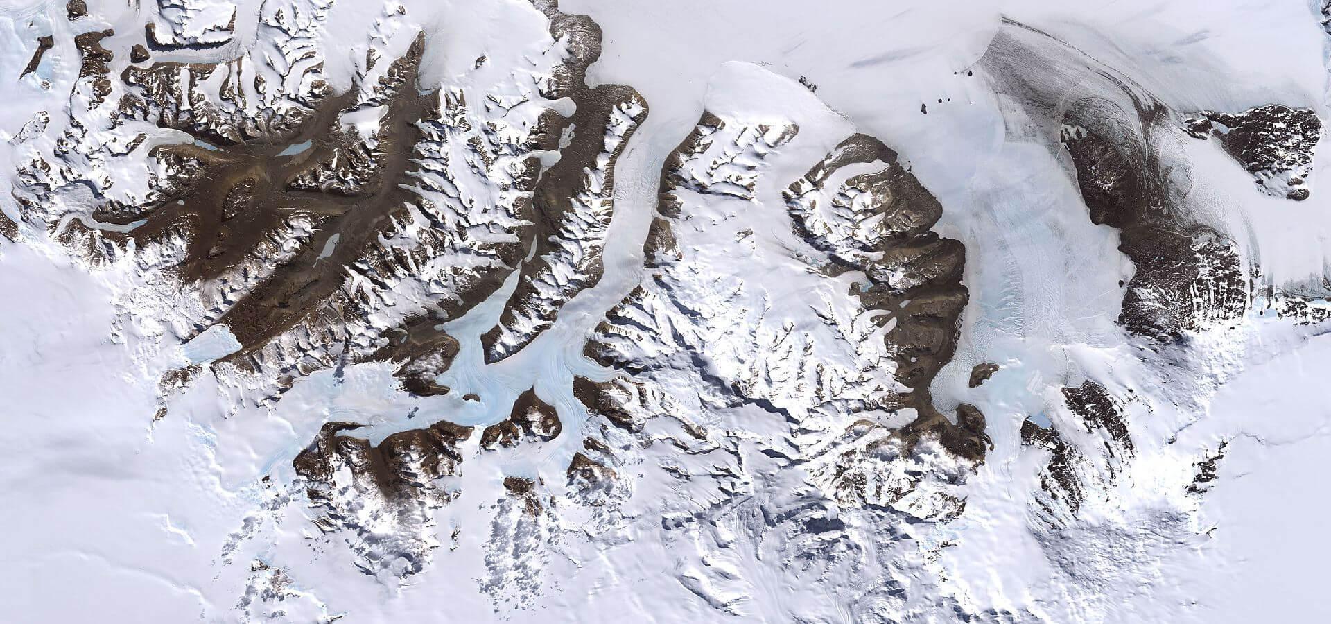 دانشمندان به دنبال موجودات میکروسکوپی در جنوبگان