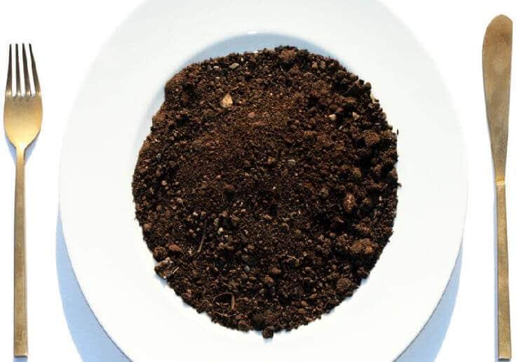 خوردن خاک عمدی بوسیله بزرگسالان یا مرض خاک خواری