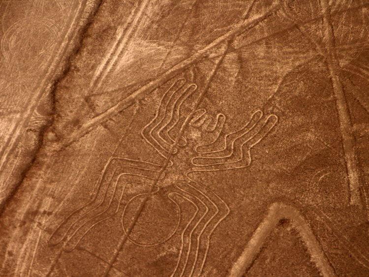 The Nazca Lines خطوط نازکا