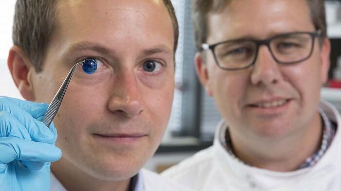 روکیدا - چطور قرنیه چشم را به صورت سهبعدی چاپ می کنند؟ - پزشکی