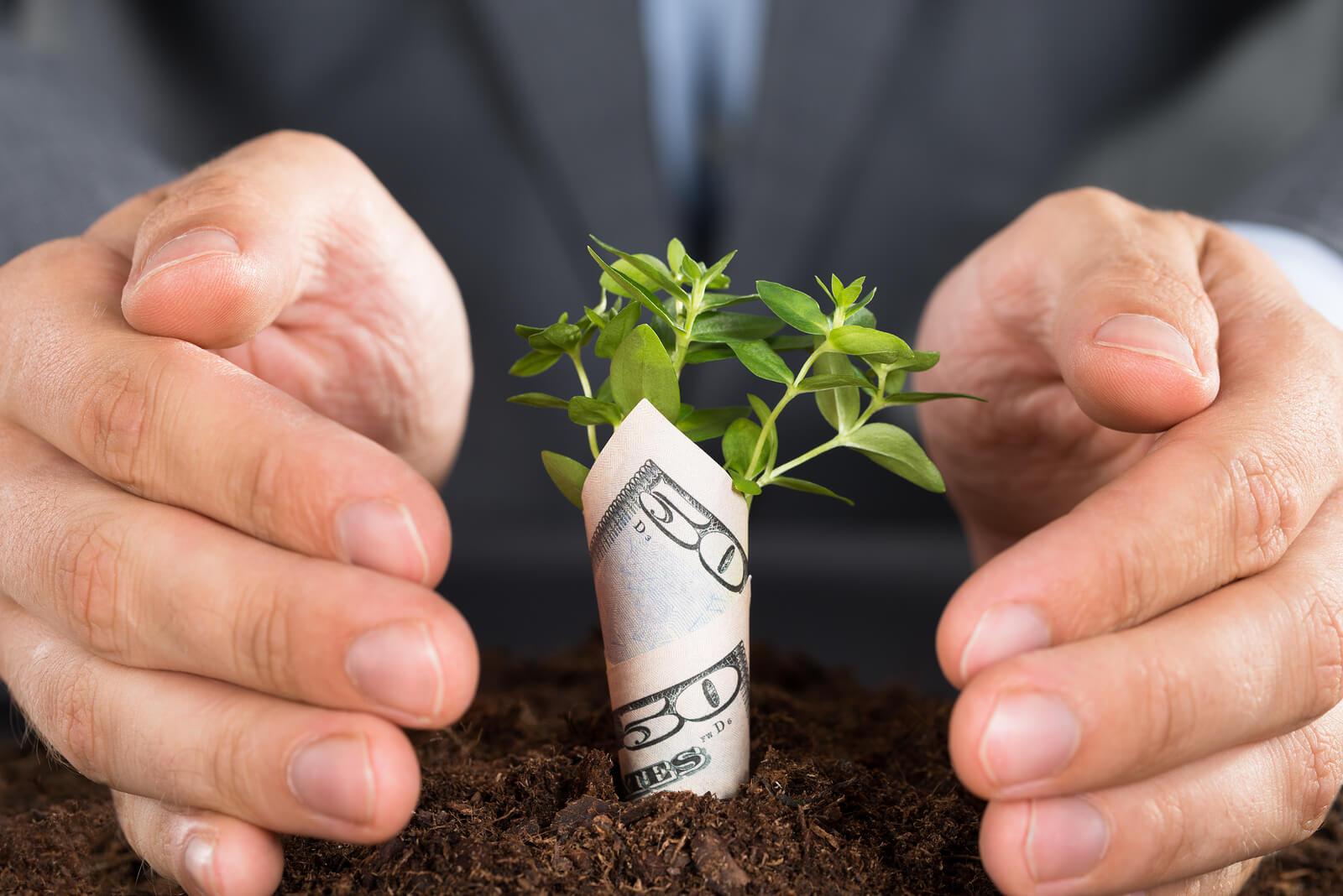 سرمایه در گردش کسب و کار و آنچه باید درباره سودآوری بدانید