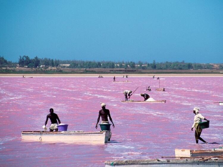 دریاچه رتبا سنگال