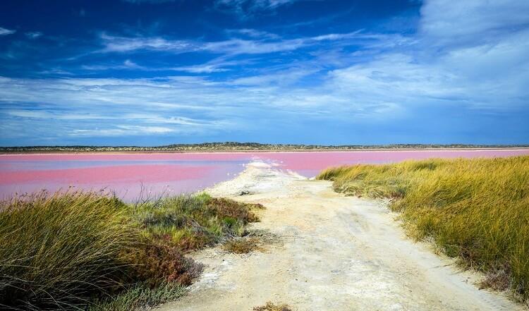 دریاچه صورتی ویکتوریا
