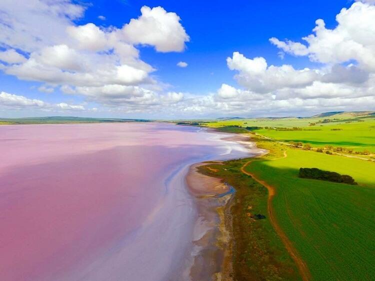 دریاچه هیلیر استرالیا