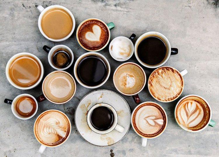 چرا نوشیدن قهوه دفع مدفوع را راحتتر میکند؟ دانشمندان برای رسیدن به پاسخ این سوال به موشها قهوه دادند