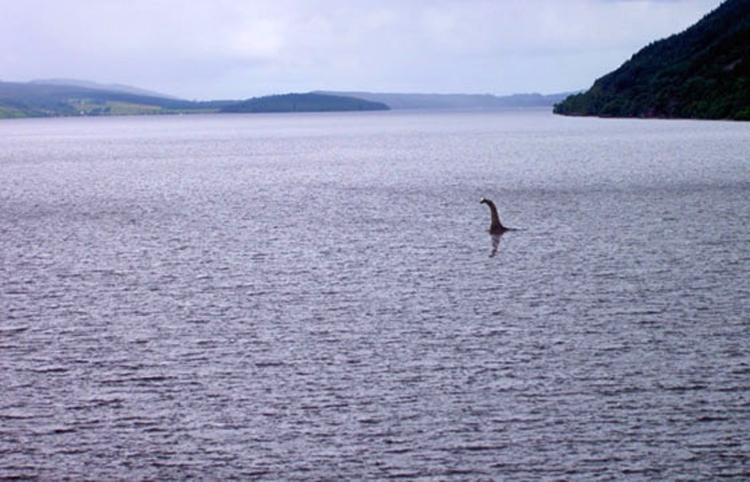 گزارش هیولای دریا