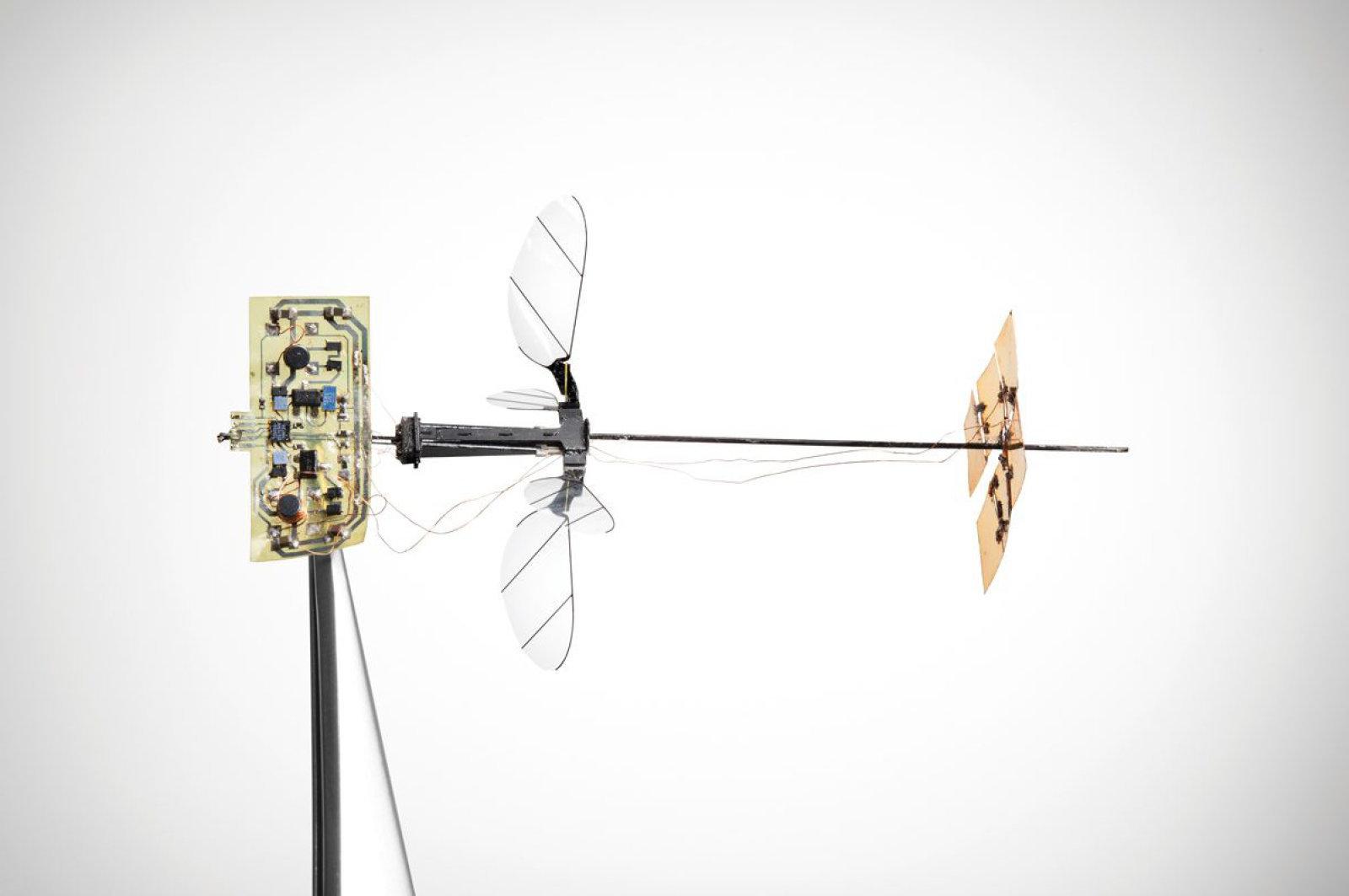 روبات زنبوری دانشگاه هاروارد