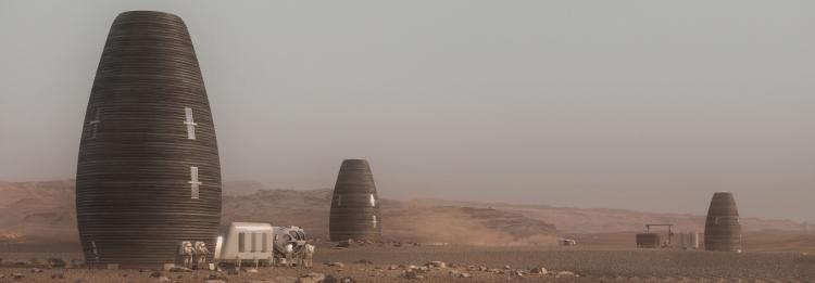 قابلیت حیات در مریخ پرورش گیاه