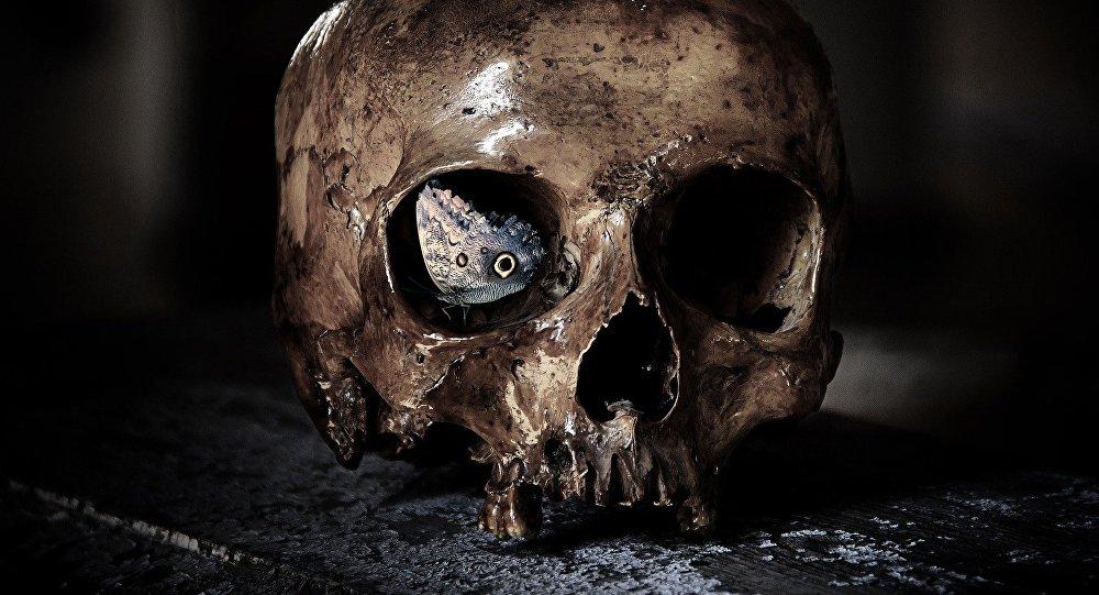 اسکلتهای باستانی با جمجمههای عجیب شبیه به بیگانگان در کرواسی کشف شدند