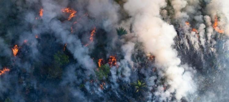 دود آتش سوزی جنگل آمازون