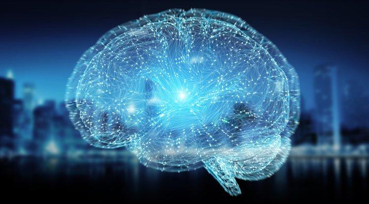 consciousness brain patterns 1