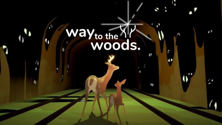مسیری به جنگل