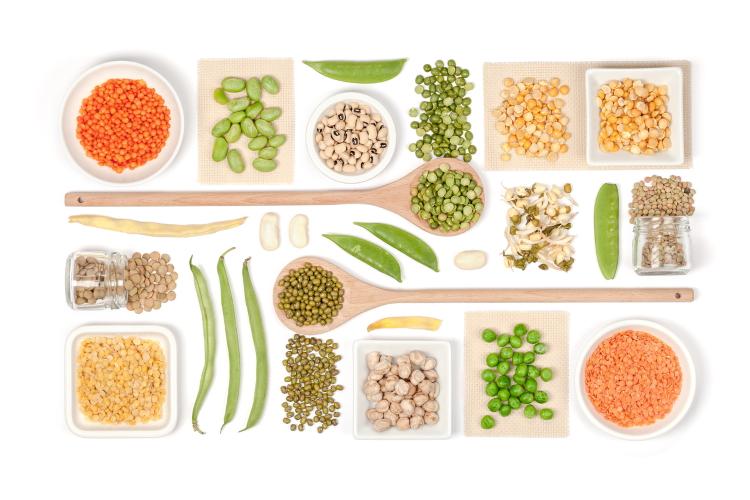مواد مغذی رژیم گیاهخواری