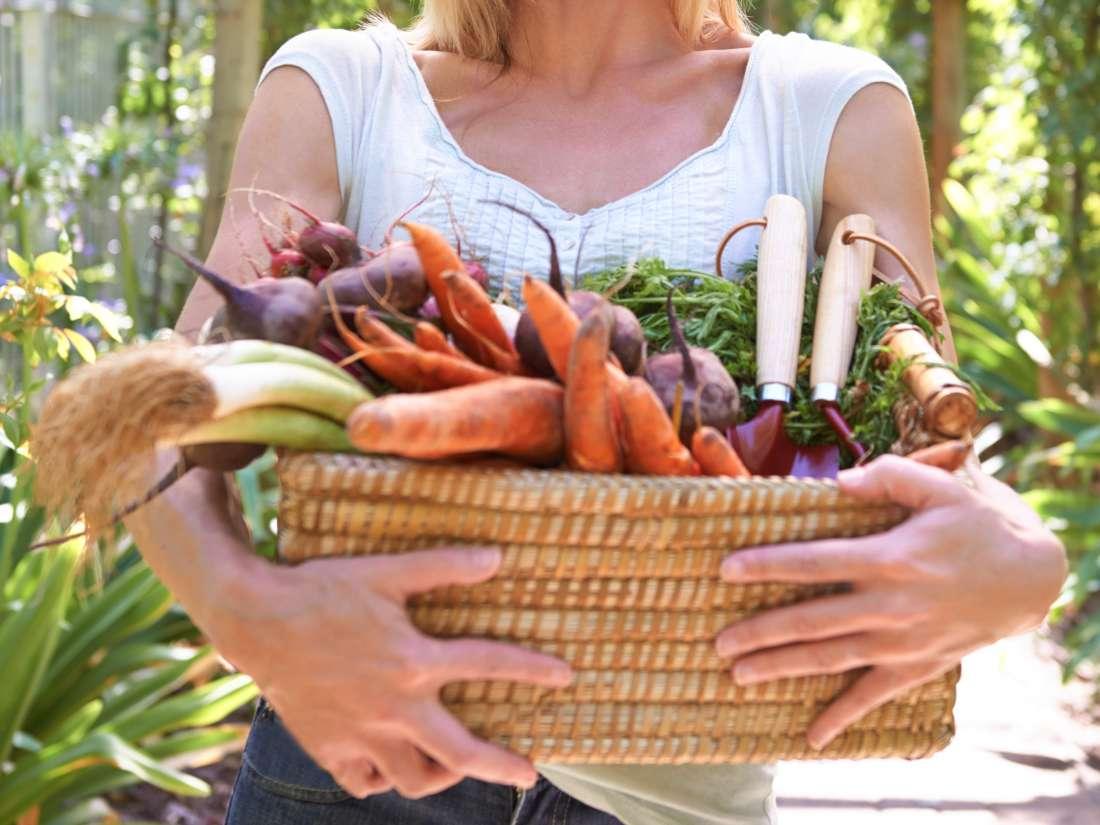 بین وگان و گیاهخواری چه تفاوتی وجود دارد؟