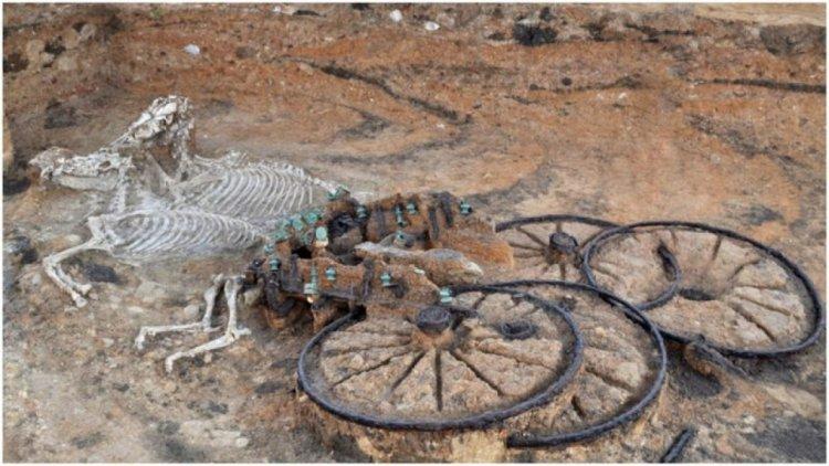 گور خیرهکننده یک جنگجو به طور کامل، همراه با ارابه و دو اسب، در انگلستان کشف شد 1