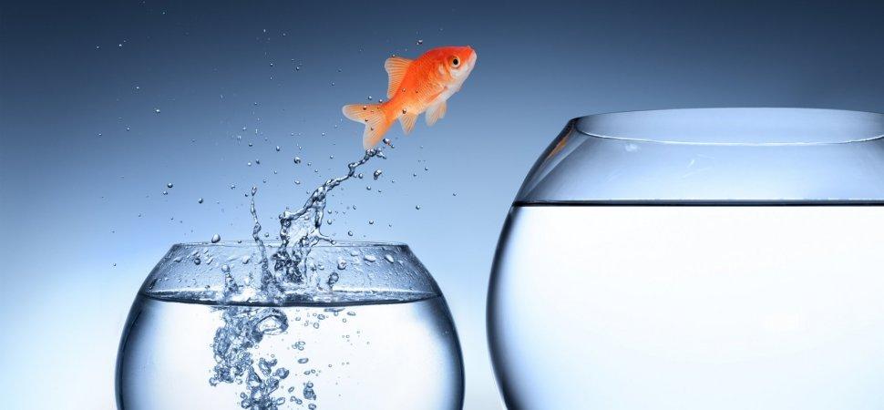 5 افسانه که تقریبا همه در مورد موفقیت و قدرت باور دارند