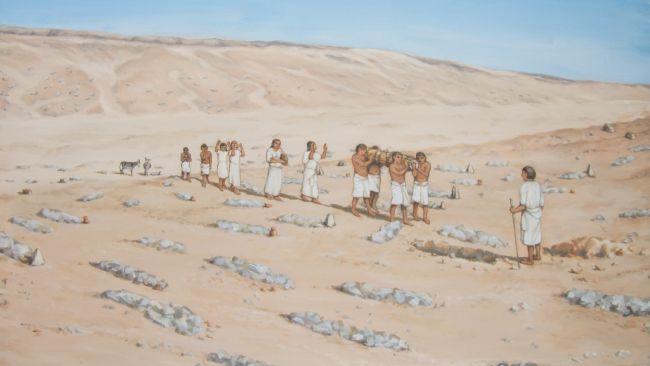 از سر مخروطیان مصری چه چیزهایی میدانید؟