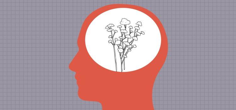 ذهنیت رشد در مقابل ذهنیت ثابت