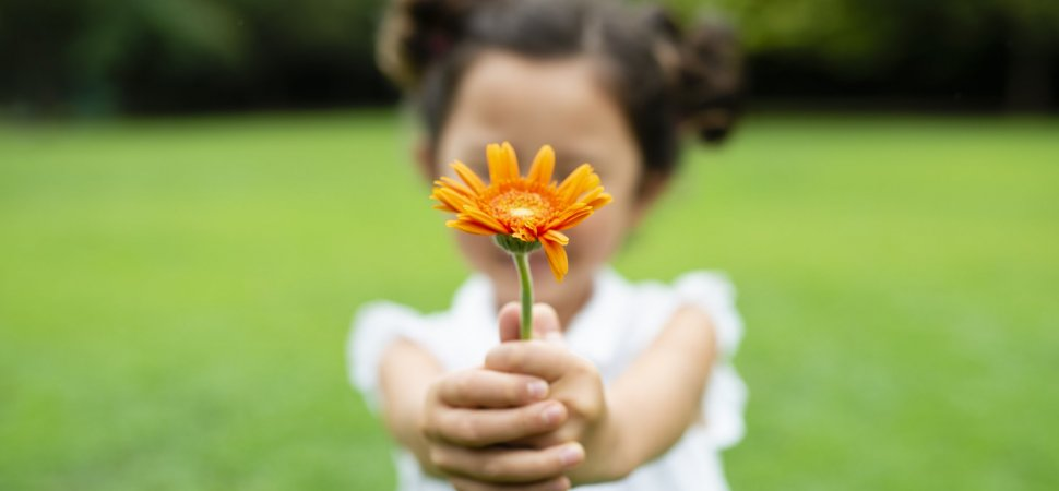 چرا در زندگی باید قدردان باشیم؟