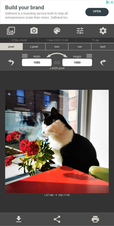 روکیدا - با بهترین اپلیکیشنهای اندرویدی برای کاهش اندازه عکس آشنا شوید - اپلیکیشن تغییر اندازه عکس, اپلیکیشن تغییر اندازه عکس اندروید