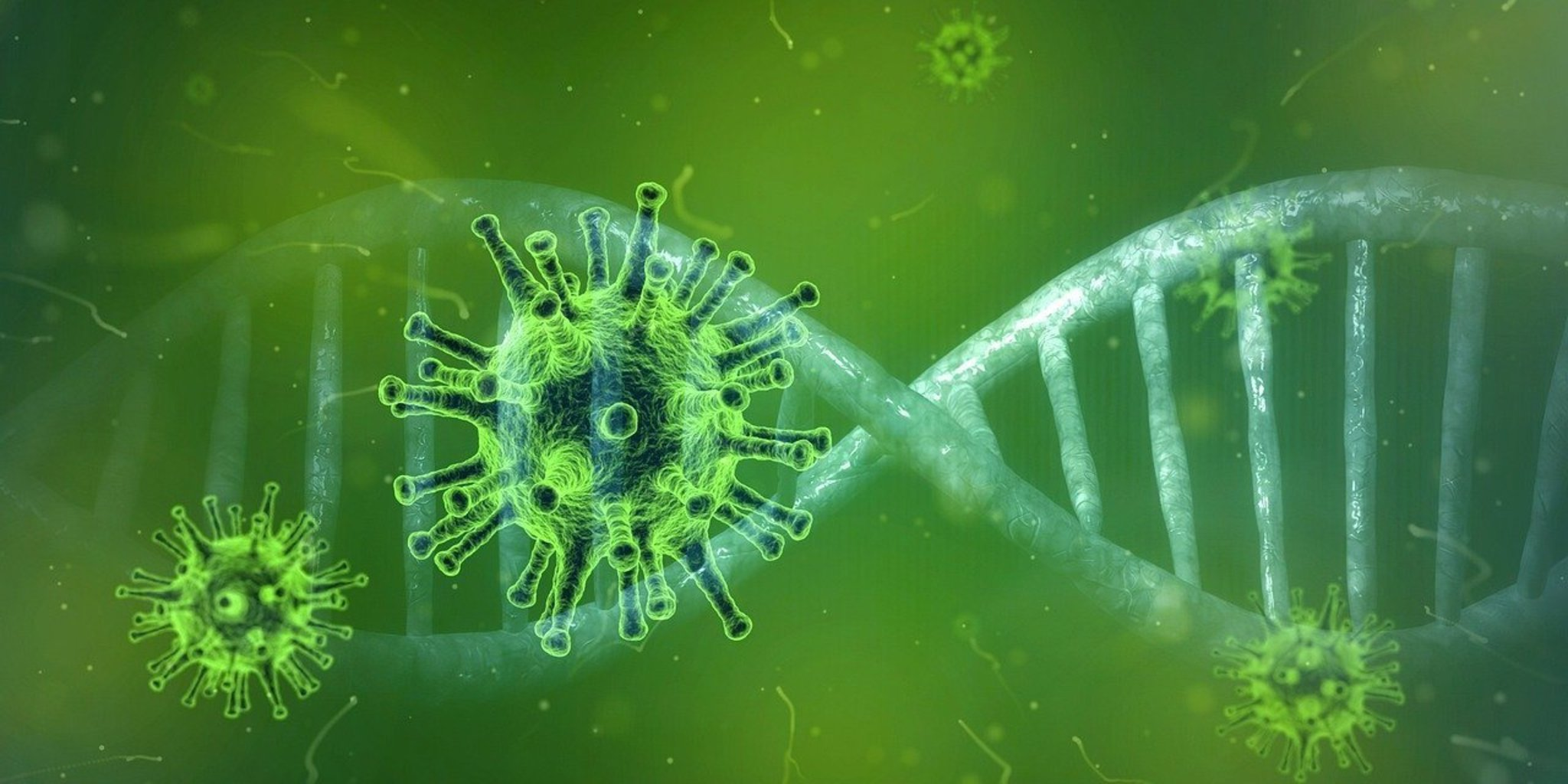 روکیدا | ویروس ها چگونه عمل می کنند؟ | علایم کرونا ویروس, ویروس کرونا, کروناویروس