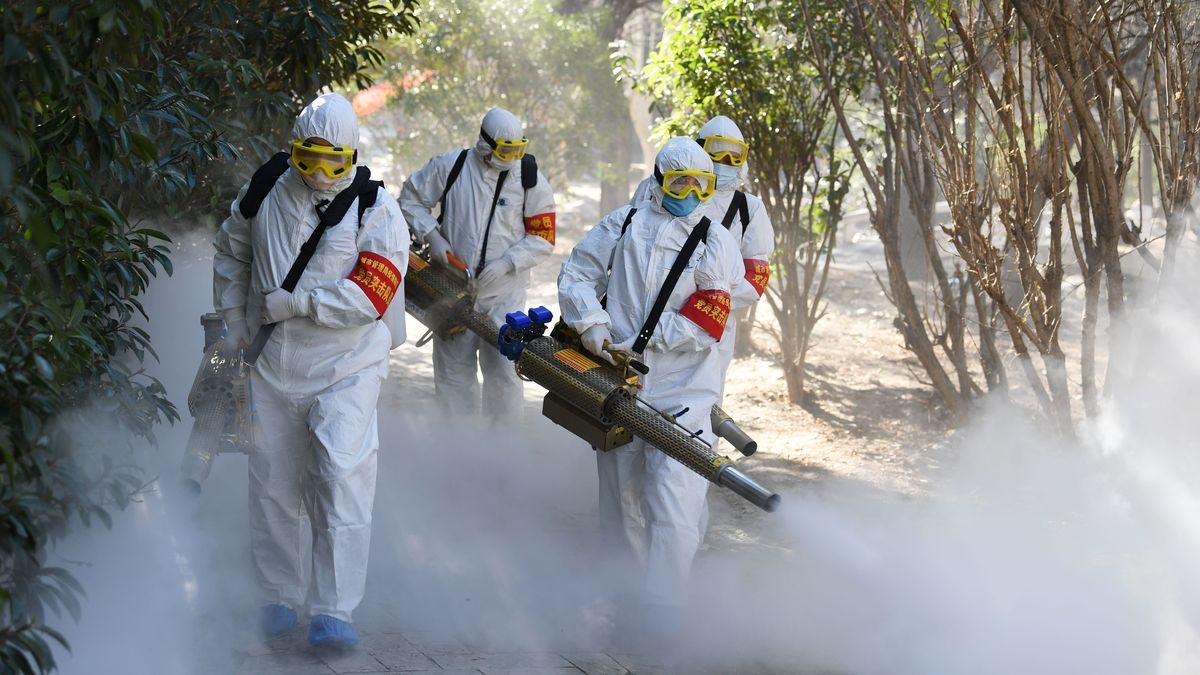 روکیدا - جاسوسان آمریکایی می گویند، ویروس کرونا ساخت بشر نیست - اطلاعات عمومی, ویروس کرونا, کروناویروس