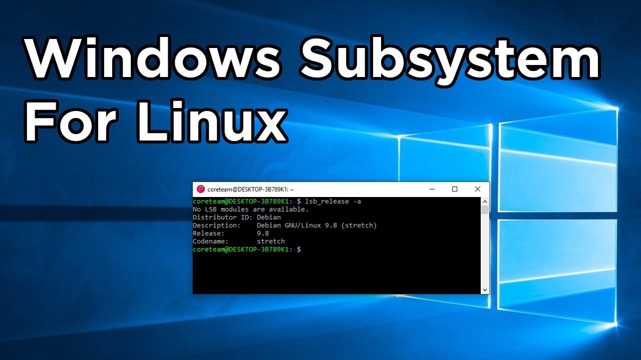 windows subsystem for linux social