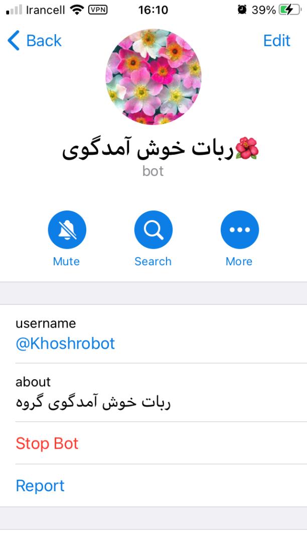 روکیدا | معرفی 8 ربات خوش آمد گویی برای گروه های تلگرام |