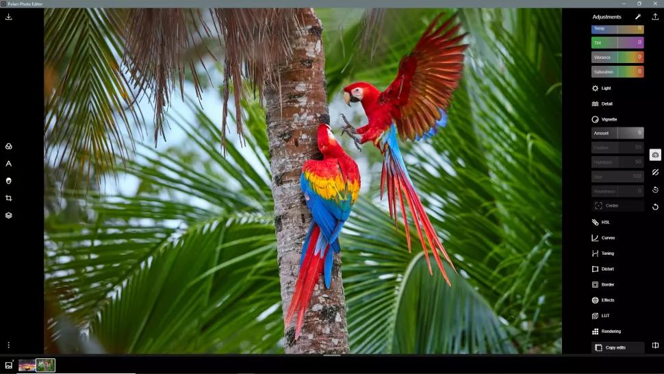 Polarr بهترین ابزار رایگان ادیت عکس برای ویندوز 10