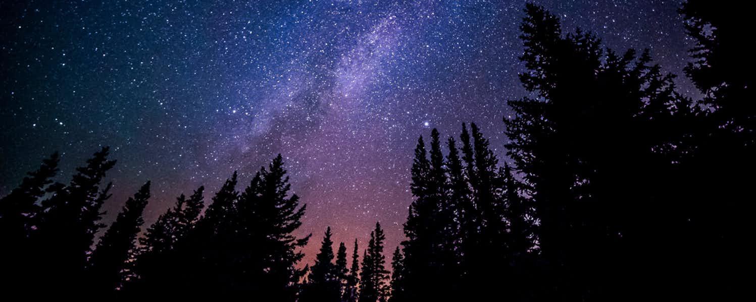 navigate using stars night sky