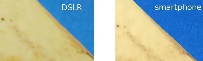 رقابت دوربین DSLR با تلفن هوشمند: 4 زمین بازی و حکم آخر