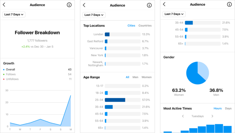 how to access instagram audience analytics 768x435 1