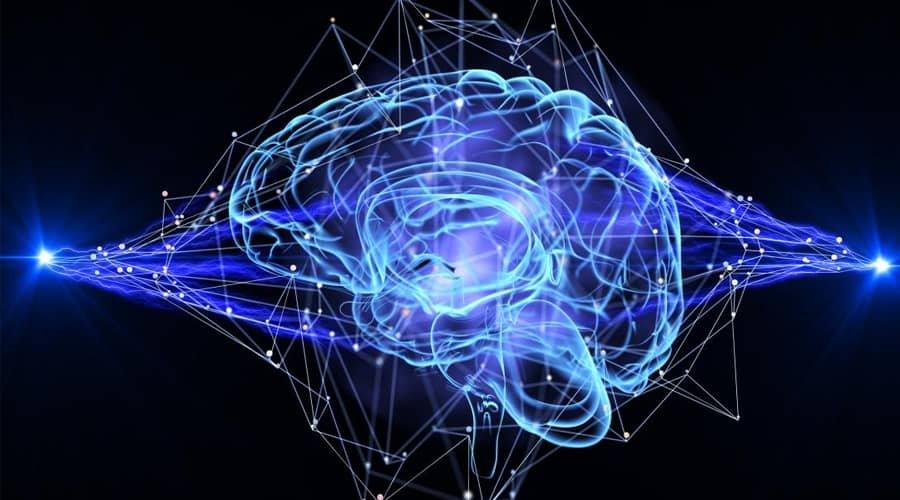 از راز هوش انسان چه می دانیم؟ دانشمندان چه می گویند؟
