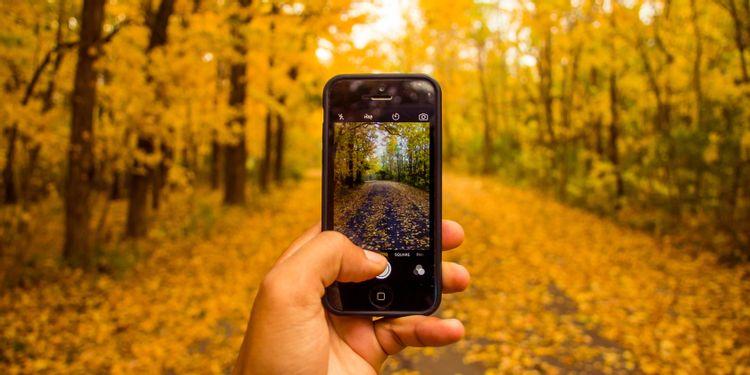جستجوی معکوس عکس