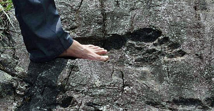 The Giant Footprint of Pingyan
